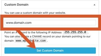 Set the custom domain to either domain.com or www.domain.com then click the Set Custom Domain button.