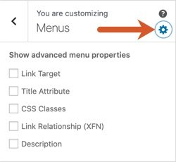 Click the gear icon in the WPHubSite Theme customizer Menus section to turn on advanced menu properties.