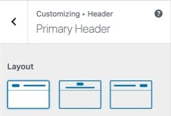 WPHubSite Theme customizer primary header formatting options.