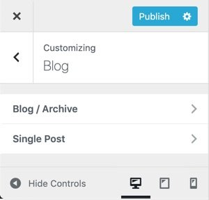 WPHubSite WordPress Theme Customizer blog settings.