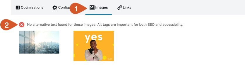 Reviewing any missing SEO information from images.
