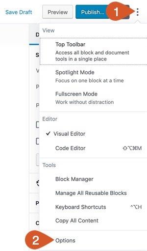 Access WordPress Standard Editor (block editor) Options from the menu.
