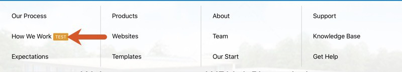 WPHubSite Theme Pro Module Nav Menu highlight label pointed out.