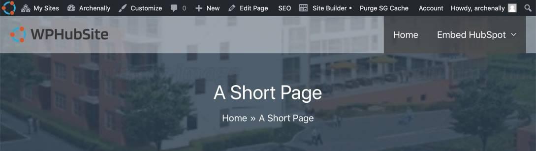 WPHubSite Theme pro module custom page headers.