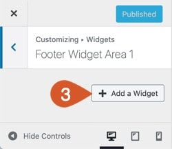 WPHubSite WordPress customizer Add a Widget button.