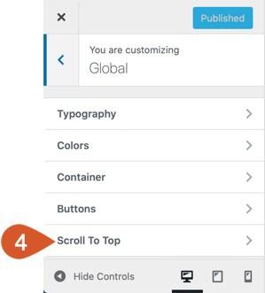 WPHubSite Theme Customizer Scroll To Top button option.